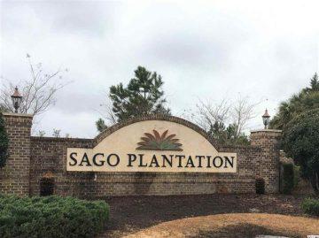 SOLD! 1112 Cycad Drive (Lot 4) Sago Plantation
